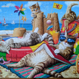 750 piece cat jigsaw puzzle, Beachcombers