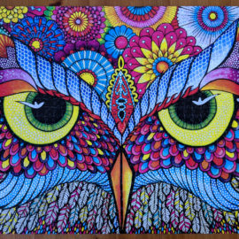 Challenging jigsaw puzzle, Owl Eyes 1000 pieces