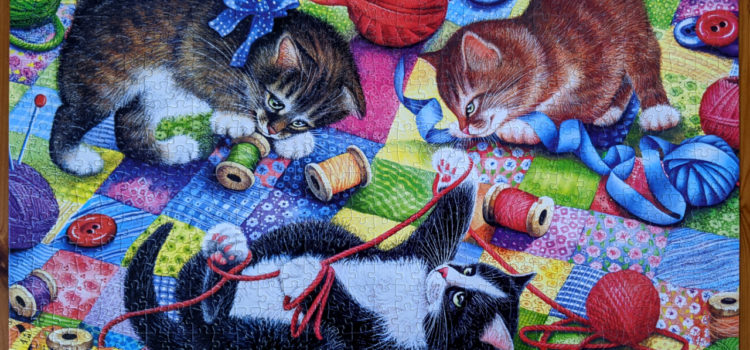 Knitting Kittens playing with yarns on quilt
