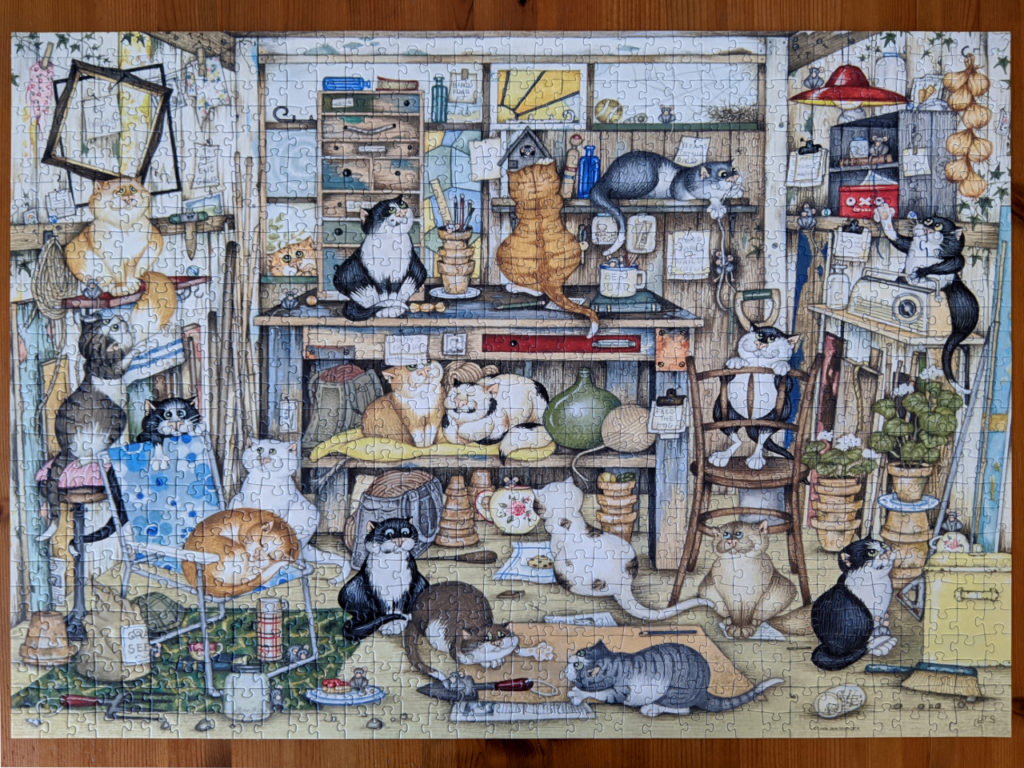 Crazy Cats in Dad's Shed is a crazy mess
